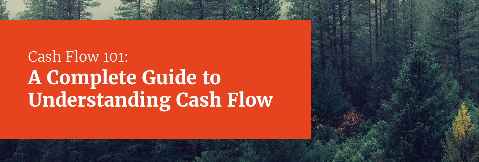 Cash Flow 101: A Complete Guide to Understanding Cash Flow