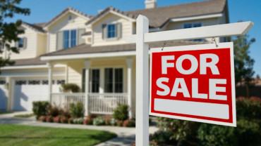 Real Estate Management Pitch Deck